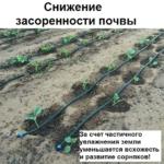 Сокращение сорняков